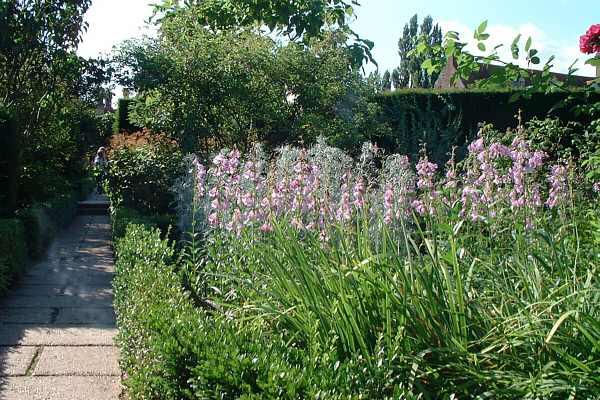 Sissinghurst Castle Gardens Rose Garden